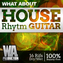 What About: House Rhythm Guitar